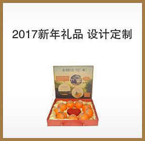 2017新年礼品 设计定制